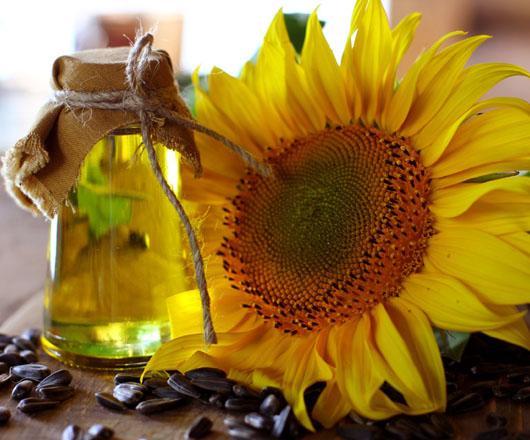 Olej słonecznikowy surowy